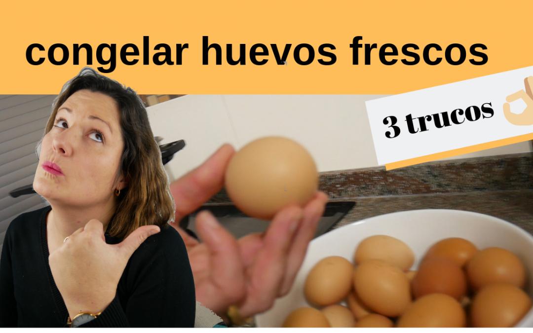 ¿Se pueden congelar los huevos frescos?